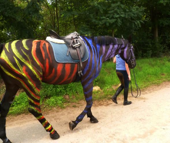 horse painting oder Bodypainting by Marlies Brinker Rheine NRW