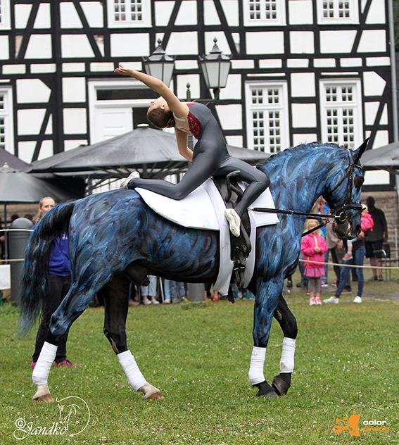 HORSE PAINTING by Marlies Brinker, Rheine NRW, Bodypainting mit Fotoshooting www.color-diving.com, Foto: www.tierfotografie-jandke.de