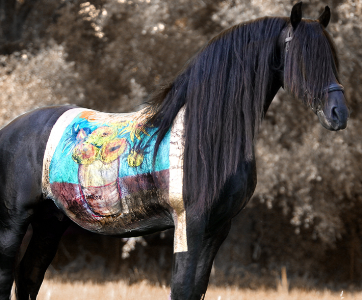 Horse painting , Vincent van Gogh, Bodypainting Marlies Brinker, Sonnenblumen, Pferd, anmalen, Fotoshooting