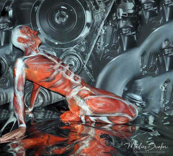 bodypainting, muskeln, messen, fotoshooting,marlies, brinker, color diving, Körperwelten, Muskelphasern, Sixpack, Bodypainting Messen,
